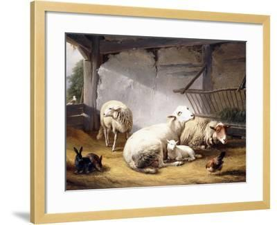 Sheep, Rabbits and a Chicken in a Barn, 1859-Eugene Joseph Verboeckhoven-Framed Giclee Print