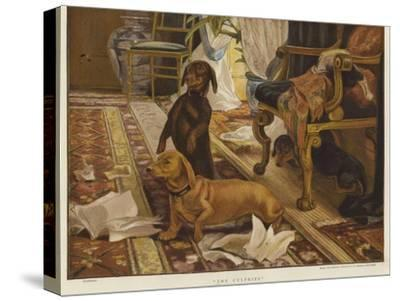 Three Dachshunds around a Chair in a Living Room-Otto Weber-Stretched Canvas Print