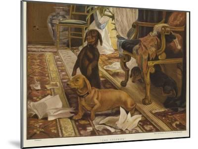 Three Dachshunds around a Chair in a Living Room-Otto Weber-Mounted Giclee Print