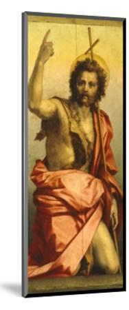 Painting of St John the Baptist-Andrea del Sarto-Mounted Giclee Print