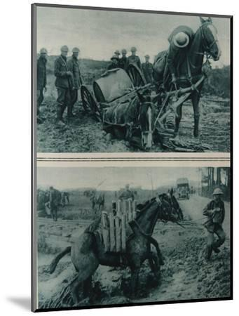War Horses Sinking in the Mud, Northern France, August 1917--Mounted Giclee Print