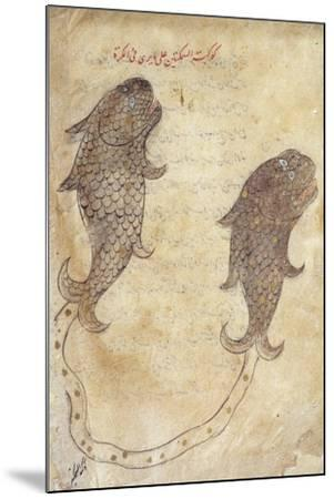 Constellation Pisces from the Book of Fixed Stars by Azophi--Mounted Giclee Print