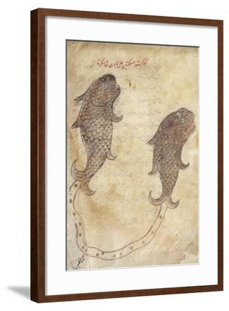 Constellation Pisces from the Book of Fixed Stars by Azophi--Framed Giclee Print