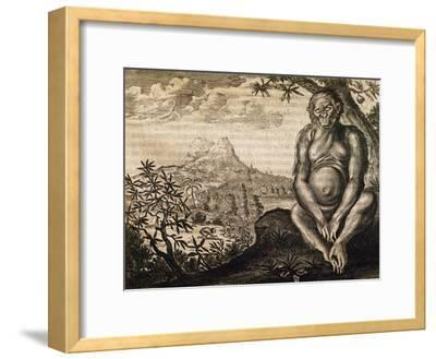 Chimpanzee, Engraving from the Description of Africa-Olfert Dapper-Framed Giclee Print
