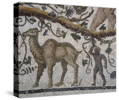 Black Man and Camel, Detail from So-Called Mosaic of Silenus of Thysdrus--Stretched Canvas Print