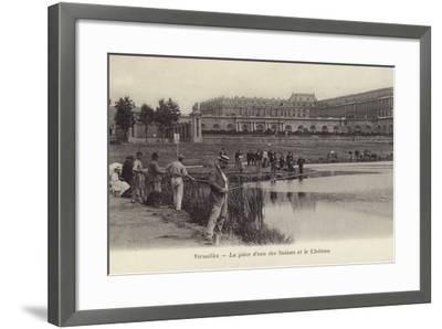 Postcard Depicting Fishing in the Grounds of the Palace of Versailles--Framed Photographic Print