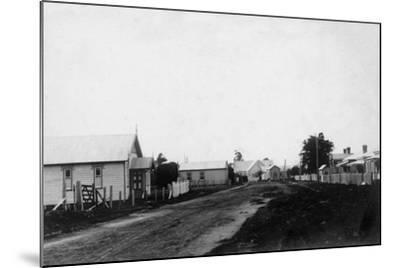 Waipu Congregational Church and Presbyterian Church--Mounted Photographic Print