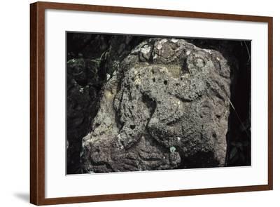 Bird Man, Rock Carving Near Orongo, Rapa Nui National Park--Framed Photographic Print
