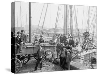 Unloading Oyster Luggers, Baltimore, Maryland, 1905--Stretched Canvas Print