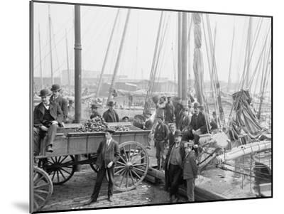 Unloading Oyster Luggers, Baltimore, Maryland, 1905--Mounted Photographic Print