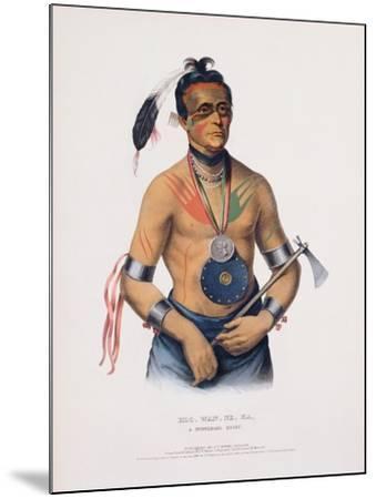 Hoo-Wan-Ne-Ka, Illustration from 'The Indian Tribes of North America'-Charles Bird King-Mounted Giclee Print