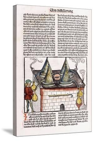 Illustration of a Late 15th Century Distillery to Extract the Essential Oils of Plants, 1500-Hieronymus Brunschwig-Stretched Canvas Print