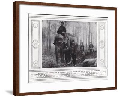 Kolossal! Hathi Harnessed--Framed Photographic Print