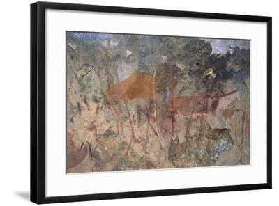 Figures of Ungulates, Bushmen or San Cave Paintings, Maloti-Drakensberg Park--Framed Photographic Print