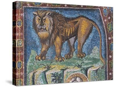Lion--Stretched Canvas Print