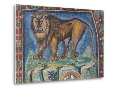 Lion--Metal Print