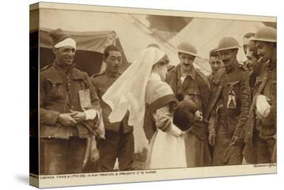 Canadian Troops Presenting a Nurse with a Dog They Found in a German Trench, World War I--Stretched Canvas Print