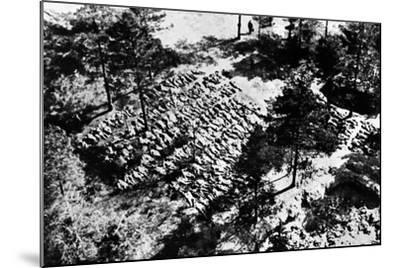 Aerial Photograph of Excavated Bodies from the Mass Graves in Katyn Forest, 1943--Mounted Photographic Print