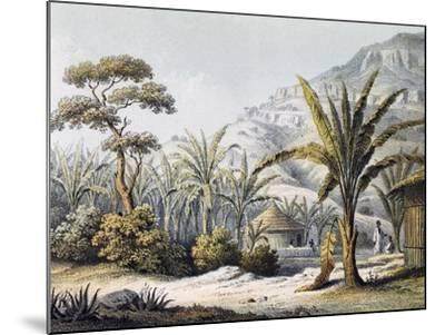 View of Huts in Enzet, Musa, Engraving from Travels of Martin Theodor Von Heuglin--Mounted Giclee Print