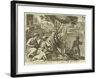 Plate from the Series Venationes Ferarum, Avium, Piscium, Fiandre--Framed Giclee Print