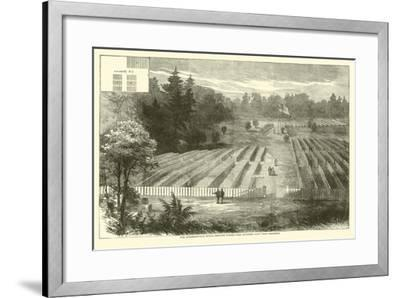The Andersonville Burial-Grounds Where Were Interred 14,000 Union Prisoners, May 1865--Framed Giclee Print