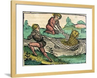 Catching a Lion Cat Fish Monster Published in the Nuremberg Chronicle, 1493--Framed Giclee Print