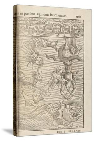 Page 1005 from 'Cosmographiae Universalis' by Sebastian Muenster, Basel, 1572--Stretched Canvas Print