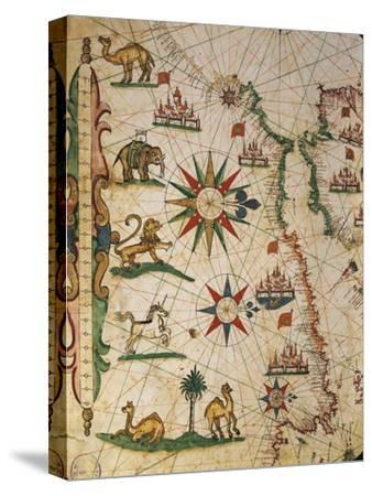 Nautical Chart of Northern Africa with Depiction of Animals and Wind Rose-Pietro Giovanni Prunus-Stretched Canvas Print