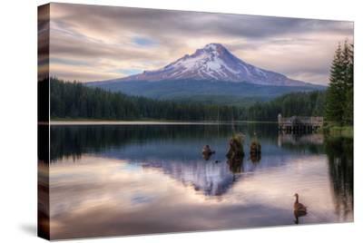Quiet Time at Trillium Lake, Mount Hood Wilderness, Oregon-Vincent James-Stretched Canvas Print