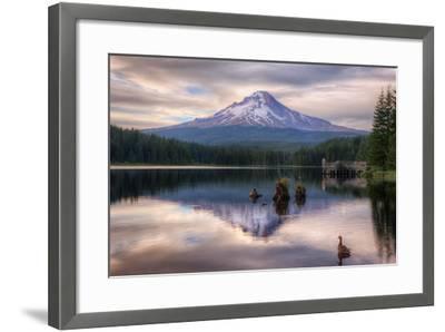 Quiet Time at Trillium Lake, Mount Hood Wilderness, Oregon-Vincent James-Framed Photographic Print