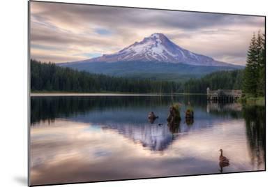 Quiet Time at Trillium Lake, Mount Hood Wilderness, Oregon-Vincent James-Mounted Photographic Print