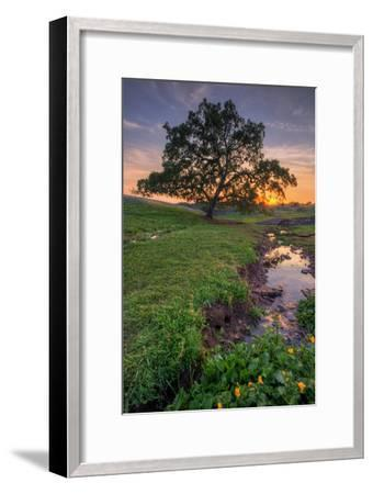 Sunset Steam at Table Mountain, Oroville California-Vincent James-Framed Photographic Print