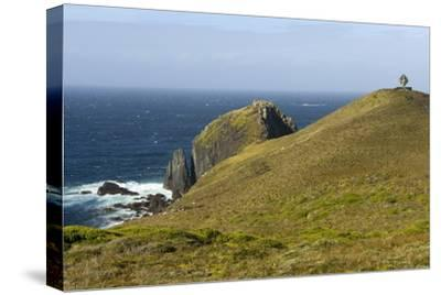 The Albatross Monument at Cape Horn, Isla De Cabo De Hornos, Tierra Del Fuego, Chile, South America-Tony Waltham-Stretched Canvas Print