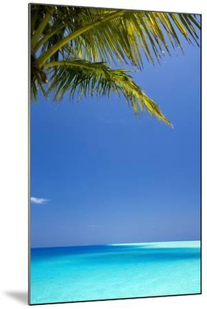 Shades of Blue and Palm Tree, Tropical Beach, Maldives, Indian Ocean, Asia-Sakis-Mounted Photographic Print