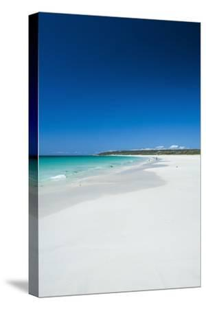 White Sand Beach and Turquoise Waters-Michael-Stretched Canvas Print