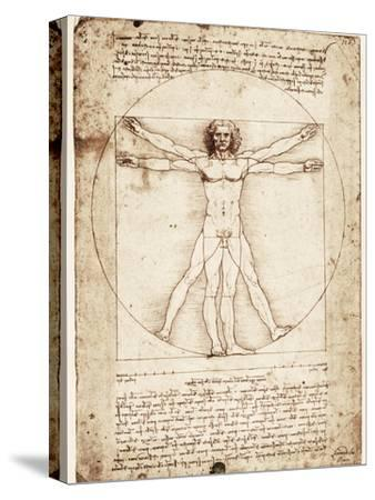 Vitruvian Man-Leonardo da Vinci-Stretched Canvas Print