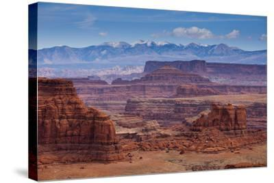 The Rugged Canyons of Canyonlands National Park Seen from the White Rim Trail Near Moab, Utah-Sergio Ballivian-Stretched Canvas Print