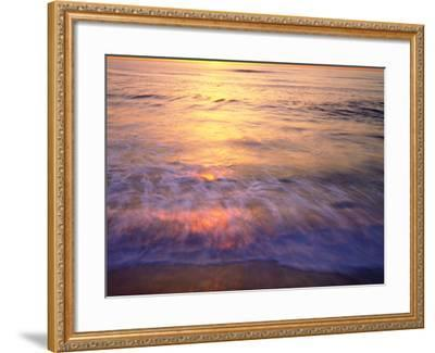 USA, California, San Diego. Sunset Cliffs Beach Reflects the Sunset-Jaynes Gallery-Framed Photographic Print