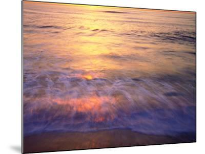 USA, California, San Diego. Sunset Cliffs Beach Reflects the Sunset-Jaynes Gallery-Mounted Photographic Print