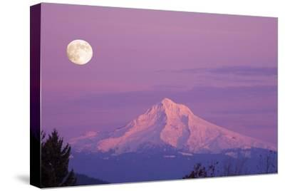 Mount Hood and Full Moon-Craig Tuttle-Stretched Canvas Print