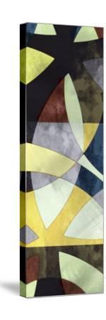 Elliptic Path I-James Burghardt-Stretched Canvas Print