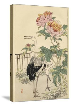 Crane and Peony-Bairei-Stretched Canvas Print