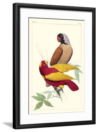 Lemaire Parrots II-C.L. Lemaire-Framed Art Print