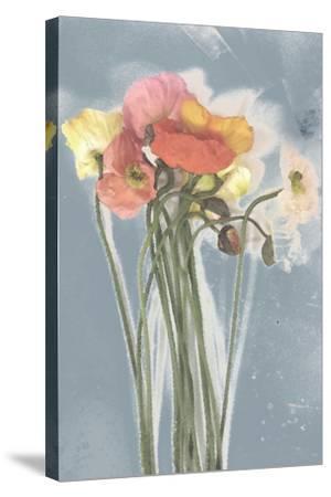 Poppy Spray III-Jennifer Goldberger-Stretched Canvas Print