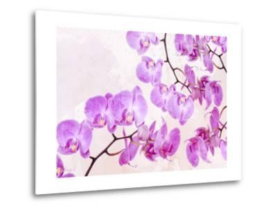 Fluttering Orchid I-Roozbeh-Metal Print