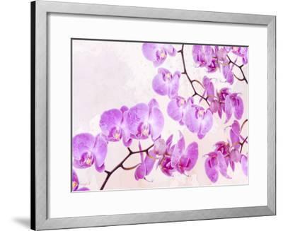 Fluttering Orchid I-Roozbeh-Framed Art Print