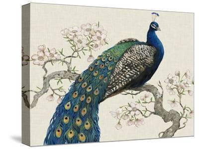 Peacock and Blossoms I-Tim O'toole-Stretched Canvas Print