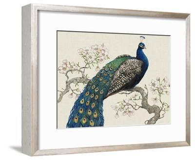 Peacock and Blossoms I-Tim O'toole-Framed Art Print