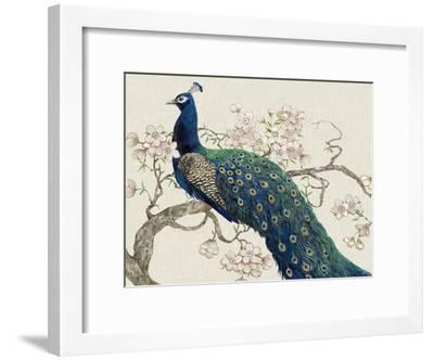 Peacock and Blossoms II-Tim O'toole-Framed Art Print
