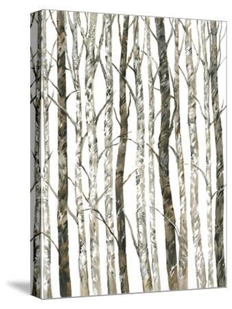 Bare II-Tim O'toole-Stretched Canvas Print